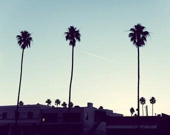 Palm Springs Photography, Light Blue Wall Art, Palm Tree Photo, Desert Print, Apartment Wall Decor, California Desert, Hip Urban Decor