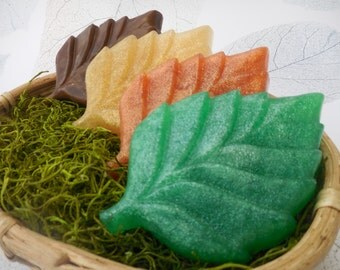 Leaf Soaps - Fall Leaves - Autumn Leaf - Thanksgiving Soap - Fall Soap Decor - Soap Favors - Fall Wedding Soap Favors - Autumn Decor