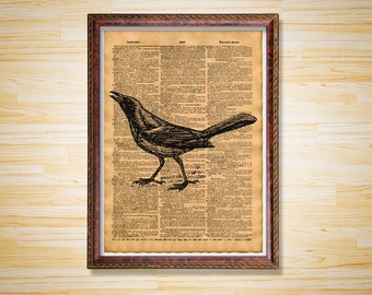 Grackle art print Bird poster Animal dictionary page