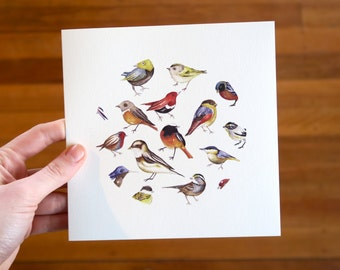Birds- Greeting Card
