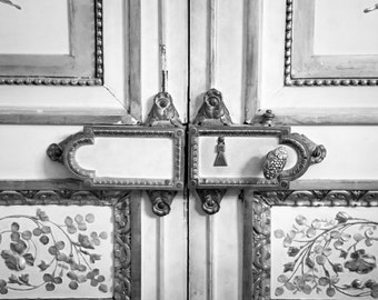 "Paris Photography, French Door Detail, Architectural Photography, Parisian Lock, French Lock, Wall Decor, Black and White, ""French Lock"""