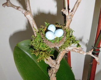 Plant Decoration/ Bird Nest plant stake/ Bird Nest