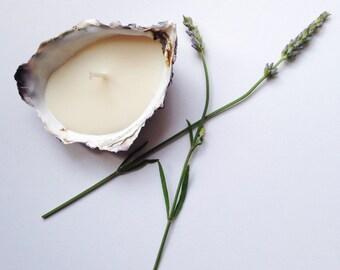 Cornish Oyster Shell Candle (1/2 dozen)