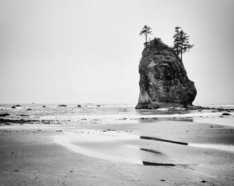 Seascape photography, Olympic National Park- Beach Art - Wall Art