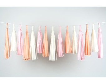 Tassel Festoon SORBET MIX