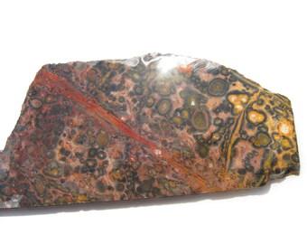 Jaguar Stone slab Leopard Skin Jasper rough slab Orbicular jasper Leopard skin jewelry