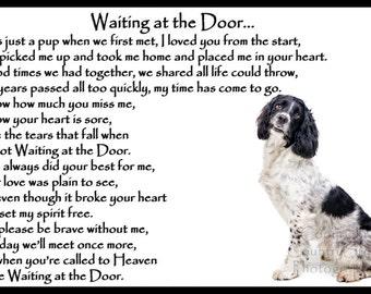 Springer Spaniel Pet Dog Memorial Bereavement Sympathy Magnetic Card Gift