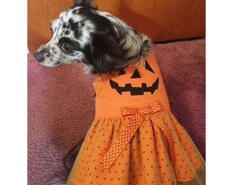 Dog Pumpkin Dress/Dog Pumpkin Costume