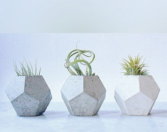 Small Dodecahedron Vessel / Planter