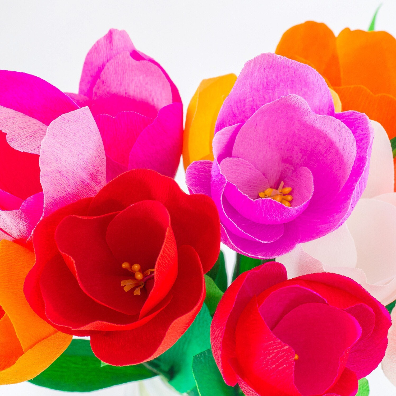 DIY Crepe Paper Flower Kit Italian crepe paper by FlowerFilledLife