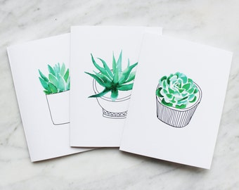 Blank Succulent Notecards (6-pack)