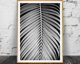 Palm Leaf Print, Plant Photo, Black and White Wall Art, Large Tropical Home Decor Poster, Modern Minimal, Digital Download