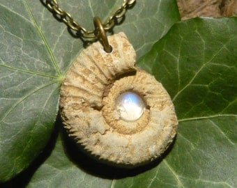 Mystical Glow - Natural Ammonite Pendant with Moonstone