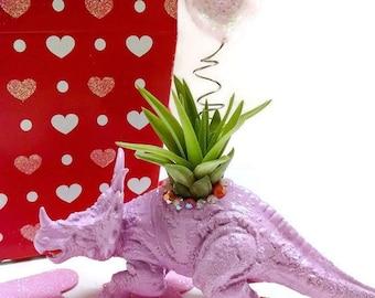 One Small Dino Valentine Air Plant Planter/Valentine decor/dinosaur planter/air plant decor/dino decor//dino Valentine/indoor plants/gift