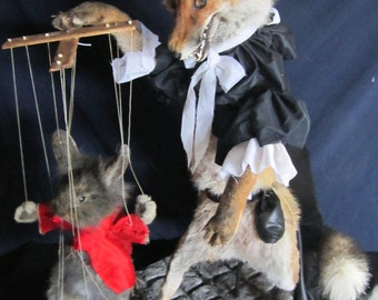 a book taxidermy anthropomorphic Fox rabbit taxidermy fox rabbit curiosity odditties