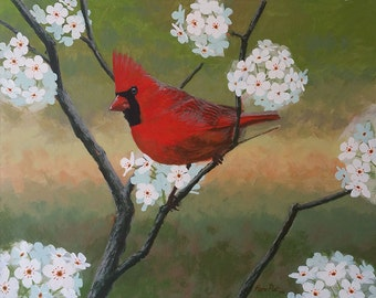 Cardinal bird - original acrylic painting