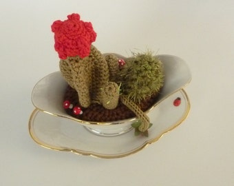 succulent crochet in vintage pot