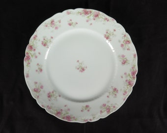 "Haviland Limoges china dinner plate 9-5/8"" Schleiger 262b pink asters daisy"