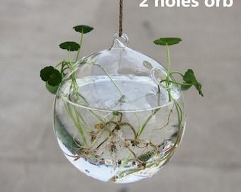 "3PCS/pack egg shape glass water planting vase//4"" globe hanging planters//green plants holders//house ornament"