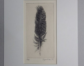 Feather 3, Drypoint Etching, Limited Edition of 10, 2015 - Feathers Serie