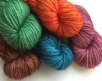 Anne of Green Gables Summer Reading Minis Set - Holly Sock