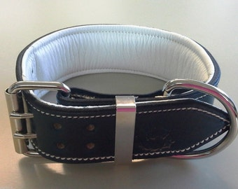 Navy Leather Dog Collar with Soft White Suede Inner Lining