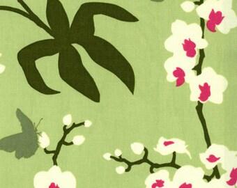 Joel Dewberry Ginseng Orchid Celery OOP