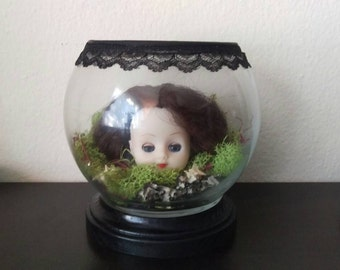 Doll Head Terrarium