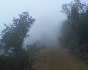 """Insta-Print 12: Foggy Path  5""""x5"""""""