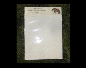 Elephant Paper ElephantPoo Paper Elephant Dung Paper natural  10 sheets/set