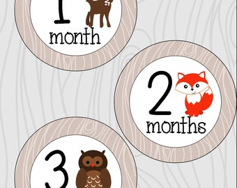 Forest Animals Monthly Baby Stickers