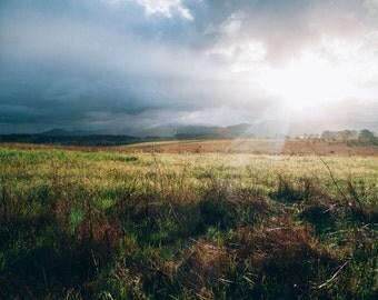 Fields Photo - Landscape Photo - Meadow Photo - Nature Photo - Digital Photo - Digital Download - Instant Download - Living Room Decor
