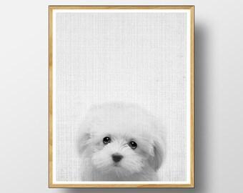 Dog Print, Baby Wall Art, Kids Wall Art, Animal Print, Baby Room Wall Art, Baby Room Prints, Baby Room Art, Nursery Animal, Nursery Print