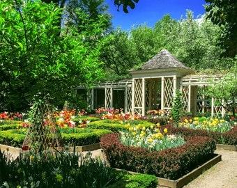 Blue Sky Garden