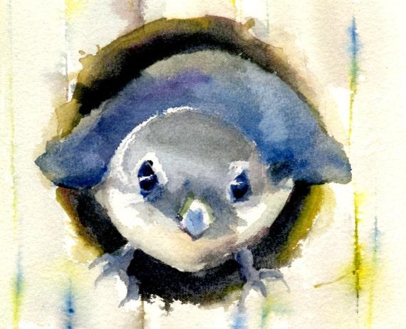Bluebird 3 -- signed print - western blue bird - watercolor painting - birds - art - children's art