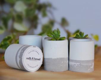 Mini Concrete Cement Pot - Two Tone - White & Grey