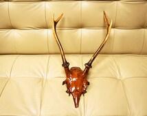 Japanese Antlers Art 1