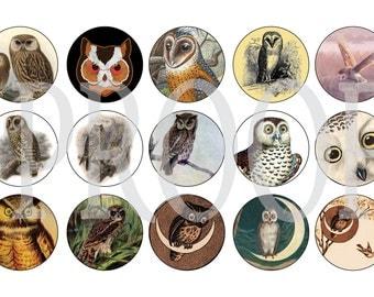 Digital Bottle Cap Image Sheet - Vintage Owl - 1 Inch Digital Collage - Instant Download