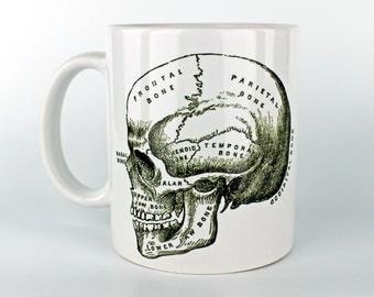 Anatomical Skull - 11 oz Coffee Mug