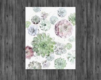 Cactus Print, Succulent Print, Cacti Print, Cactus, Botanical Print, Cactus Art, Coastal, Wall Art, Poster, Prints, Cactus Photography