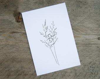 Postcard A6 grasses