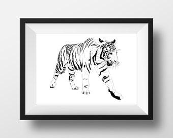 Black & White Tiger