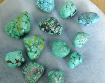 Kingman Mine Turquoise - 12 pcs - Drilled, can be used as pendants