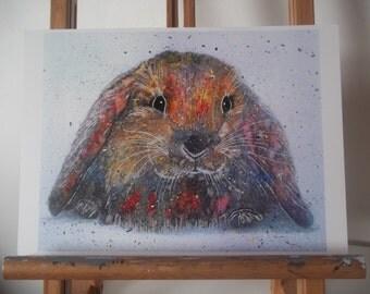 Lop-Eared Rabbit Artwork Print