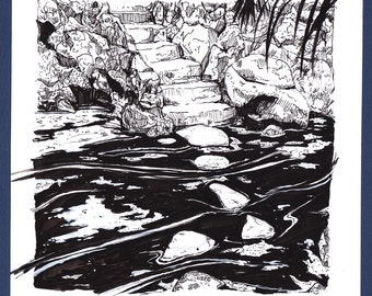 Drawing // Pond Steps Pen and Ink