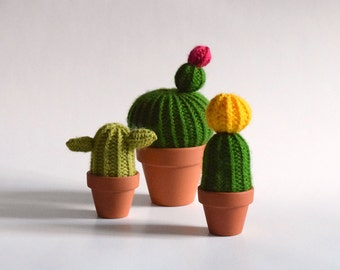 Trio Surprise - Selection mystery of three cactus wool