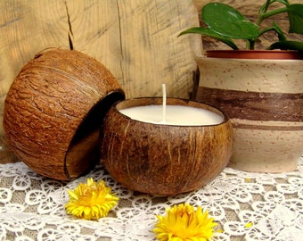 Big coconut shell candle. Palm wax candle. Tropical candle. Container candle. Handmade candle. Vegan candle. Organic candle. White candle.