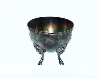 Vintage Chameleon's Color Bowl