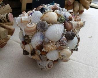 Decorative Shell Ball-X Large
