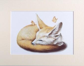 Little Curious Fox Print (A3 Mount)